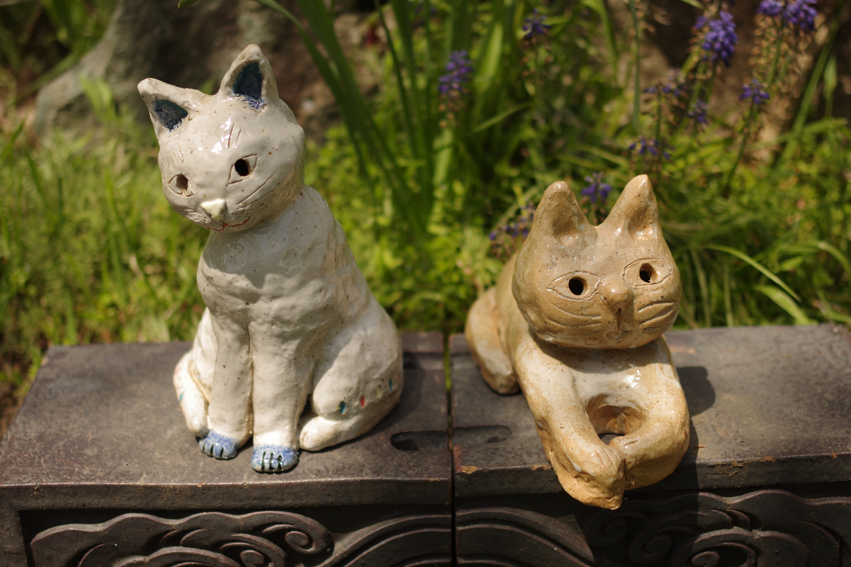 完成した猫が仲良く並んで日向ぼっこ